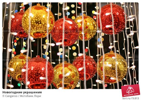 Новогодние украшения, фото № 9813, снято 14 января 2006 г. (c) Cangaroo / Фотобанк Лори