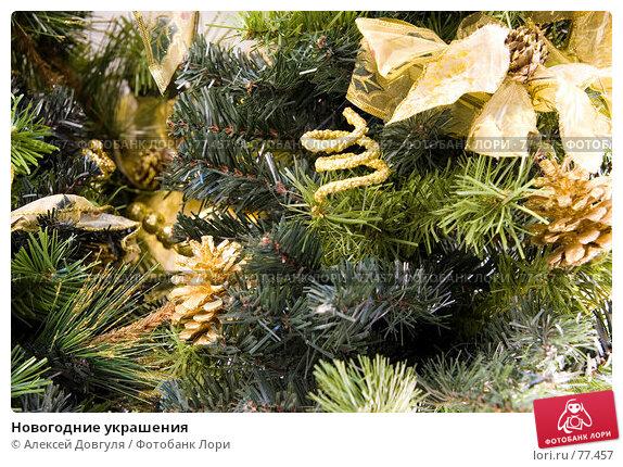 Новогодние украшения, фото № 77457, снято 4 июня 2007 г. (c) Алексей Довгуля / Фотобанк Лори