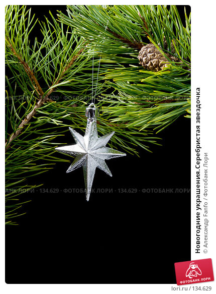 Новогодние украшения.Серебристая звездочка, фото № 134629, снято 23 января 2017 г. (c) Александр Fanfo / Фотобанк Лори