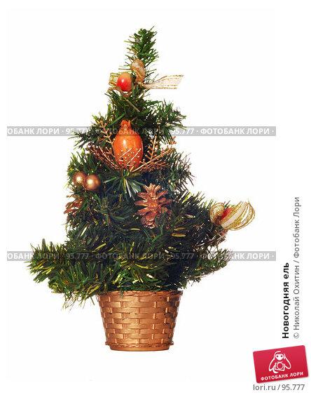 Купить «Новогодняя ель», фото № 95777, снято 2 октября 2007 г. (c) Николай Охитин / Фотобанк Лори