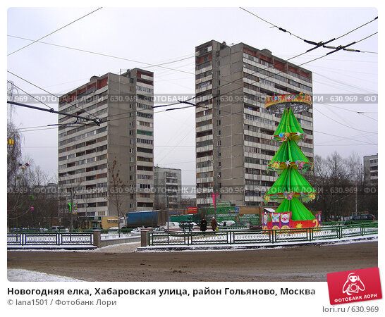 Новогодняя елка, Хабаровская улица, район Гольяново, Москва, эксклюзивное фото № 630969, снято 24 декабря 2008 г. (c) lana1501 / Фотобанк Лори