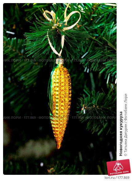 Купить «Новогодняя кукуруза», фото № 177869, снято 12 декабря 2007 г. (c) Татьяна Дигурян / Фотобанк Лори