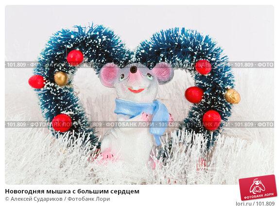 Новогодняя мышка с большим сердцем, фото № 101809, снято 21 октября 2007 г. (c) Алексей Судариков / Фотобанк Лори