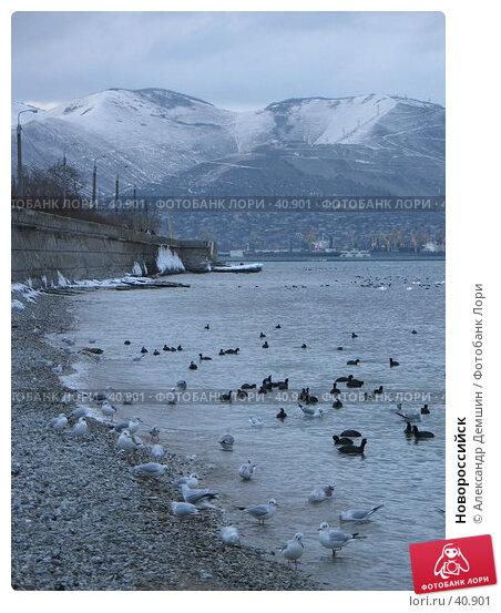 Новороссийск, фото № 40901, снято 28 января 2006 г. (c) Александр Демшин / Фотобанк Лори