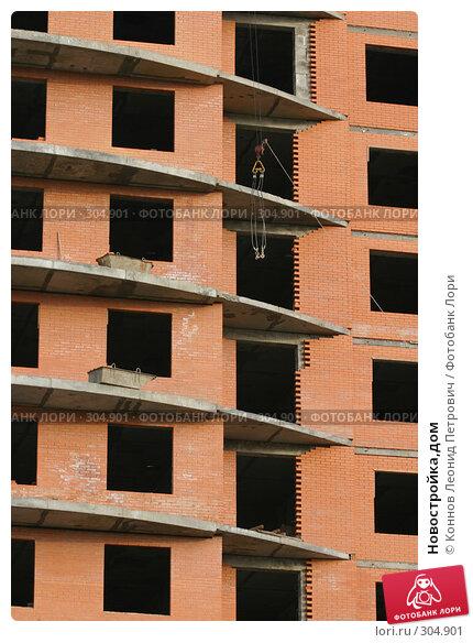 Купить «Новостройка,дом», фото № 304901, снято 27 мая 2008 г. (c) Коннов Леонид Петрович / Фотобанк Лори