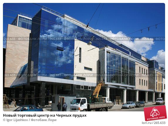 Новый торговый центр на Черных прудах, фото № 265633, снято 25 апреля 2008 г. (c) Igor Lijashkov / Фотобанк Лори
