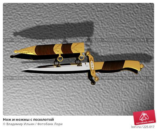Нож и ножны с позолотой, иллюстрация № 225017 (c) Владимир Ильин / Фотобанк Лори