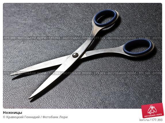 Ножницы, фото № 177393, снято 11 февраля 2005 г. (c) Кравецкий Геннадий / Фотобанк Лори