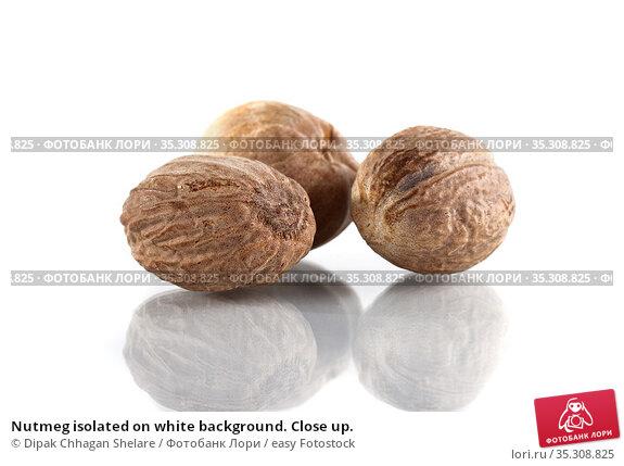 Nutmeg isolated on white background. Close up. Стоковое фото, фотограф Dipak Chhagan Shelare / easy Fotostock / Фотобанк Лори