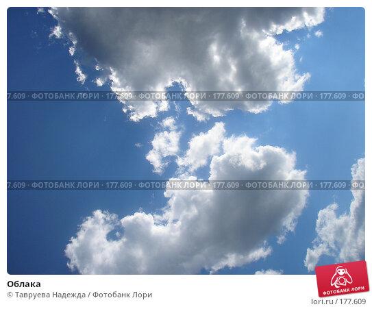 Облака, фото № 177609, снято 12 августа 2006 г. (c) Тавруева Надежда / Фотобанк Лори