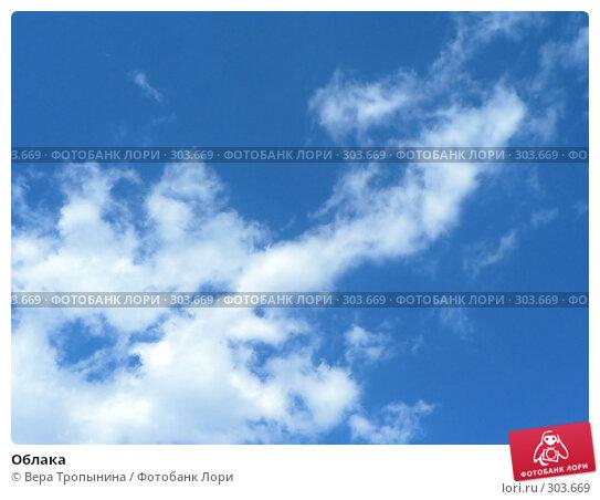 Облака, фото № 303669, снято 20 февраля 2017 г. (c) Вера Тропынина / Фотобанк Лори