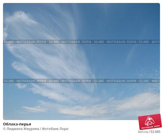 Облака-перья, фото № 53085, снято 14 июня 2007 г. (c) Людмила Жмурина / Фотобанк Лори