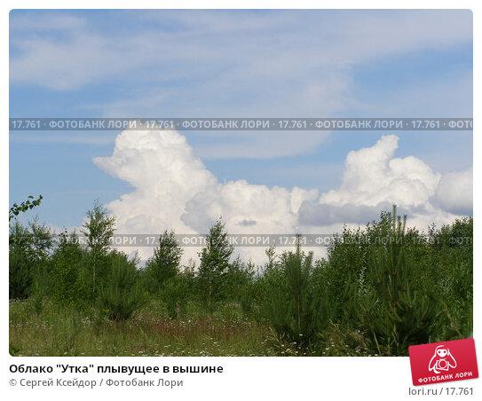 """Облако """"Утка"""" плывущее в вышине, фото № 17761, снято 27 июня 2006 г. (c) Сергей Ксейдор / Фотобанк Лори"""