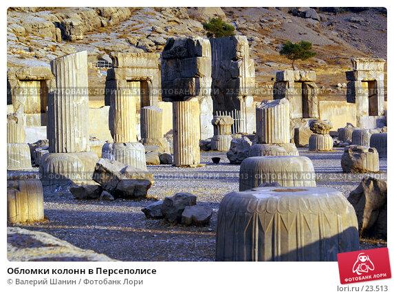 Обломки колонн в Персеполисе, фото № 23513, снято 26 ноября 2006 г. (c) Валерий Шанин / Фотобанк Лори