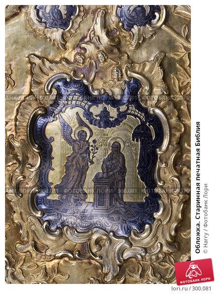 Обложка. Старинная печатная Библия, фото № 300081, снято 17 апреля 2008 г. (c) Harry / Фотобанк Лори