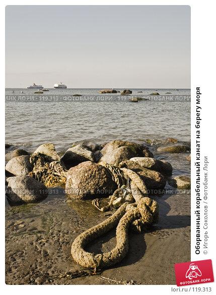 Оборванный корабельный канат на берегу моря, фото № 119313, снято 25 сентября 2005 г. (c) Игорь Соколов / Фотобанк Лори
