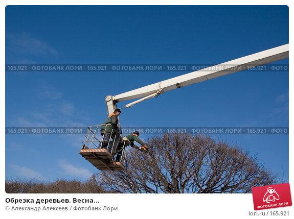 Обрезка деревьев. Весна..., эксклюзивное фото № 165921, снято 6 марта 2007 г. (c) Александр Алексеев / Фотобанк Лори