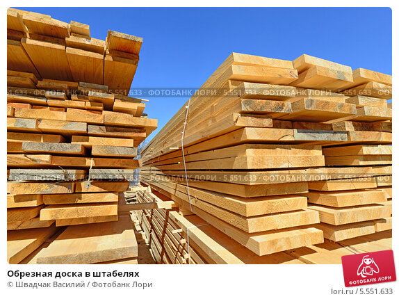 wood and wood products essay