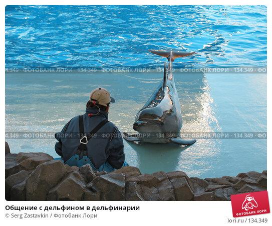 Общение с дельфином в дельфинарии, фото № 134349, снято 4 апреля 2007 г. (c) Serg Zastavkin / Фотобанк Лори