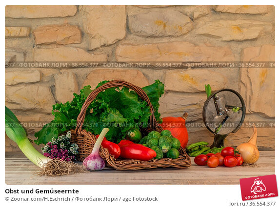 Obst und Gemüseernte. Стоковое фото, фотограф Zoonar.com/H.Eschrich / age Fotostock / Фотобанк Лори
