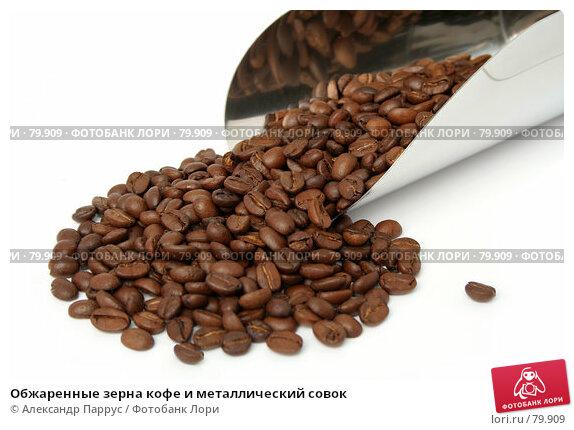 Обжаренные зерна кофе и металлический совок, фото № 79909, снято 11 февраля 2007 г. (c) Александр Паррус / Фотобанк Лори