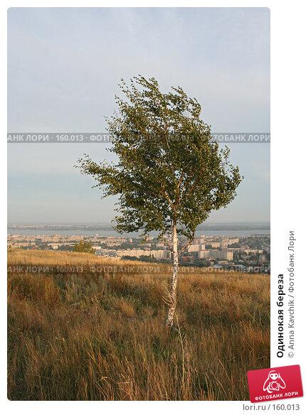 Купить «Одинокая береза», фото № 160013, снято 30 августа 2006 г. (c) Anna Kavchik / Фотобанк Лори