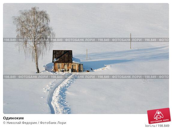 Одинокие, фото № 198849, снято 8 февраля 2008 г. (c) Николай Федорин / Фотобанк Лори