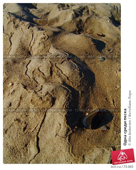 Одна среди песка, фото № 73065, снято 14 октября 2006 г. (c) Alla Andersen / Фотобанк Лори