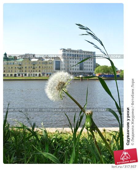 Купить «Одуванчик у реки», фото № 317937, снято 5 июня 2008 г. (c) Людмила Жмурина / Фотобанк Лори