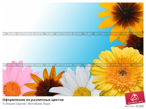 Купить «Оформление из различных цветов», фото № 78985, снято 21 апреля 2018 г. (c) Ильин Сергей / Фотобанк Лори