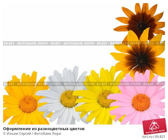 Оформление из разноцветных цветов, фото № 69821, снято 28 апреля 2017 г. (c) Ильин Сергей / Фотобанк Лори