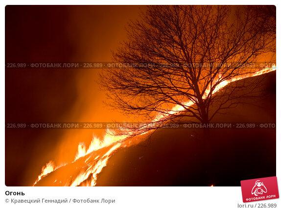 Купить «Огонь», фото № 226989, снято 10 апреля 2005 г. (c) Кравецкий Геннадий / Фотобанк Лори