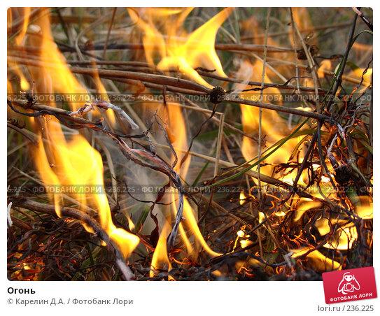 Огонь, фото № 236225, снято 29 марта 2008 г. (c) Карелин Д.А. / Фотобанк Лори