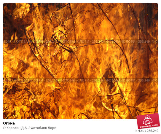 Огонь, фото № 236249, снято 29 марта 2008 г. (c) Карелин Д.А. / Фотобанк Лори