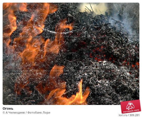 Огонь, фото № 309281, снято 12 июля 2006 г. (c) A Челмодеев / Фотобанк Лори