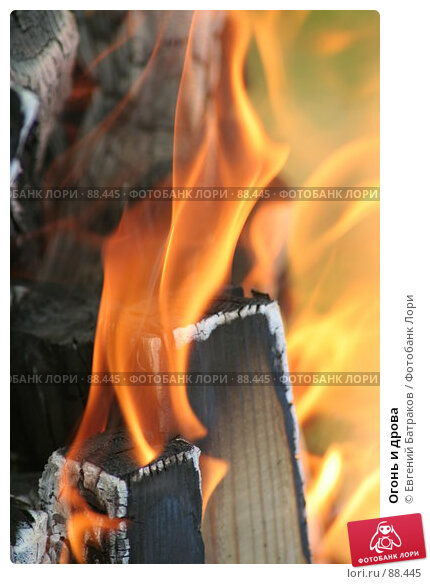 Огонь и дрова, фото № 88445, снято 12 августа 2007 г. (c) Евгений Батраков / Фотобанк Лори