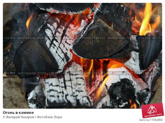 Огонь в камине, фото № 118893, снято 16 ноября 2007 г. (c) Валерий Торопов / Фотобанк Лори