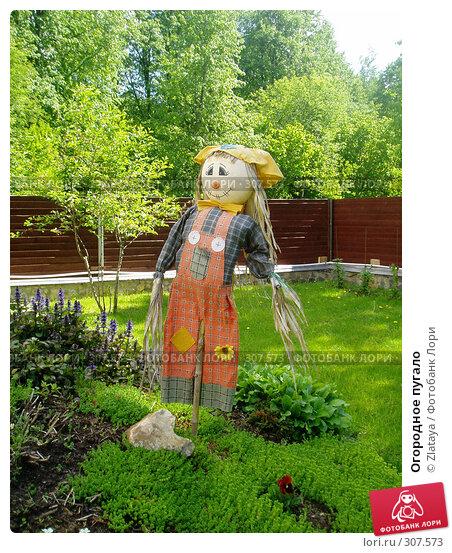 Огородное пугало, фото № 307573, снято 29 апреля 2017 г. (c) Zlataya / Фотобанк Лори