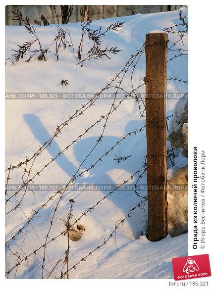Ограда из колючей проволоки, фото № 185321, снято 24 января 2008 г. (c) Игорь Веснинов / Фотобанк Лори