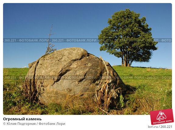 Огромный камень, фото № 260221, снято 18 августа 2005 г. (c) Юлия Селезнева / Фотобанк Лори