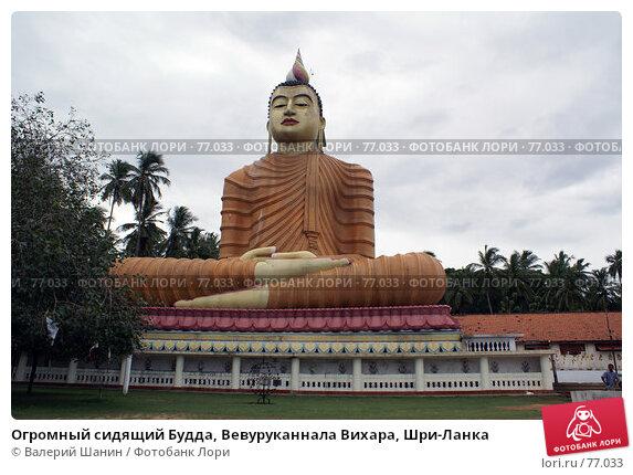 Огромный сидящий Будда, Вевуруканнала Вихара, Шри-Ланка, фото № 77033, снято 17 июня 2007 г. (c) Валерий Шанин / Фотобанк Лори