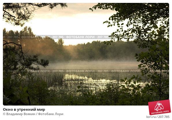 Окно в утренний мир, фото № 207785, снято 22 июля 2006 г. (c) Владимир Воякин / Фотобанк Лори
