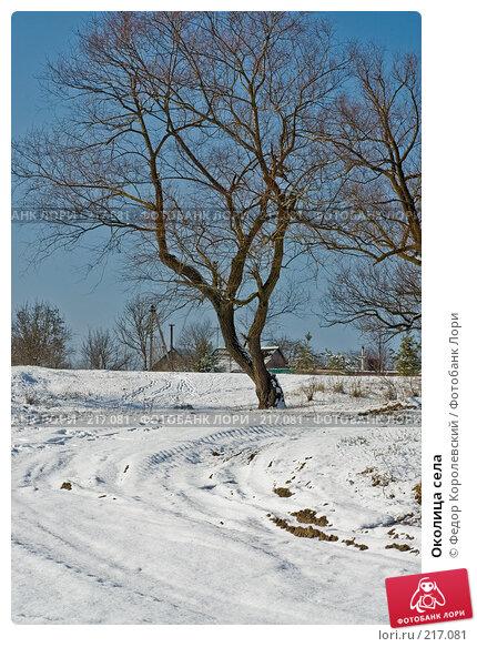 Околица села, фото № 217081, снято 16 февраля 2008 г. (c) Федор Королевский / Фотобанк Лори