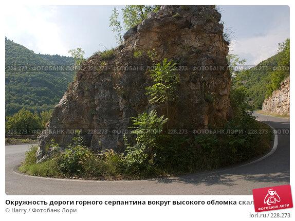 Купить «Окружность дороги горного серпантина вокруг высокого обломка скалы», фото № 228273, снято 19 августа 2007 г. (c) Harry / Фотобанк Лори