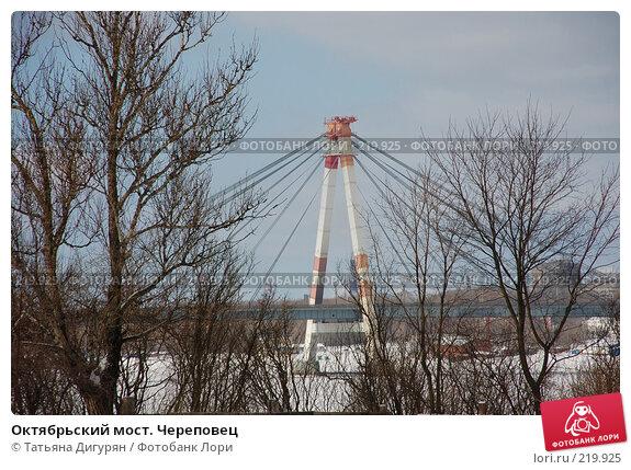 Октябрьский мост. Череповец, фото № 219925, снято 8 марта 2008 г. (c) Татьяна Дигурян / Фотобанк Лори