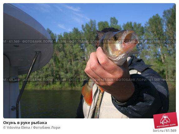 Окунь в руке рыбака, фото № 61569, снято 2 июня 2007 г. (c) Vdovina Elena / Фотобанк Лори