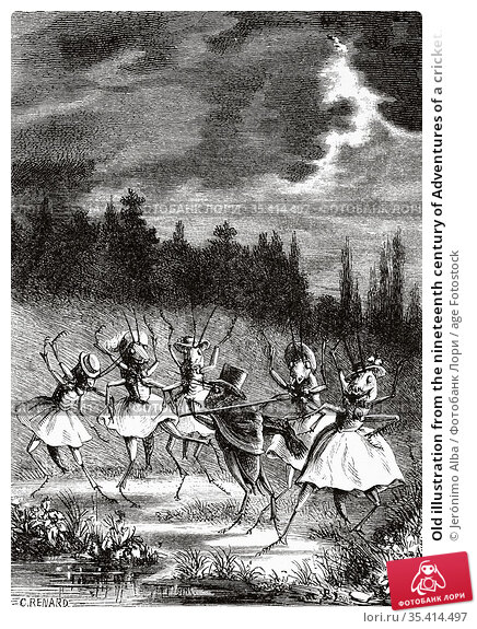 Old illustration from the nineteenth century of Adventures of a cricket... Редакционное фото, фотограф Jerónimo Alba / age Fotostock / Фотобанк Лори