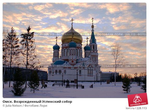 Омск. Возрожденный Успенский собор, фото № 228113, снято 8 января 2008 г. (c) Julia Nelson / Фотобанк Лори