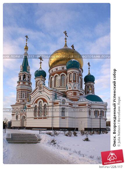Омск. Возрожденный Успенский собор, фото № 228117, снято 8 января 2008 г. (c) Julia Nelson / Фотобанк Лори