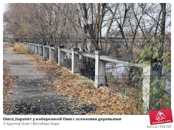 Омск,парапет у набережной Оми с осенними деревьями, фото № 114737, снято 3 ноября 2007 г. (c) Круглов Олег / Фотобанк Лори